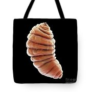 Bot Fly Larva Tote Bag