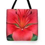 Botanical Beauty 2 Tote Bag