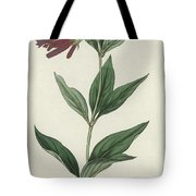 Botanical Engraving Tote Bag