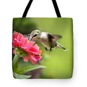 Botanical Hummingbird Tote Bag