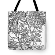 Botany: African Rue, 1597 Tote Bag