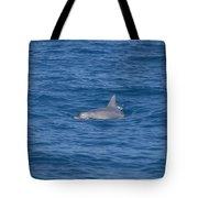 Bottlenose Dolphin Tote Bag