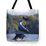 Bottleneck Dolphin Playing Tote Bag