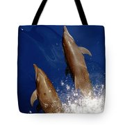 Bottlenose Dolphins Tursiops Truncatus Tote Bag