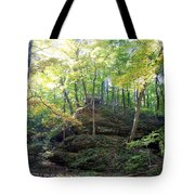 Bottom Of Devil's Punchbowl Wildcat Den Tote Bag