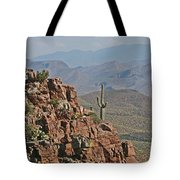 Bottom Of The Sierra Ancha Forest Tote Bag