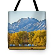 Boulder County Colorado Flatirons Autumn View Tote Bag