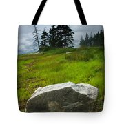 Boulder On The Shore At The Mount Desert Narrows In Maine Tote Bag