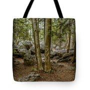 Boulder Woods Tote Bag