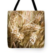 Bounty Of Nature And Labour - Featured 3 Tote Bag