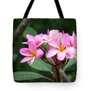 Bouquet Of Pink Plumeria Tote Bag