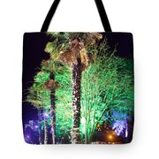 Bournemouth Winter Gardens At Night Tote Bag