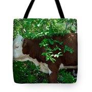 Bovine In The Shade Tote Bag