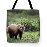 Bow Lake Bear Tote Bag
