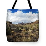 Bowen Homestead Ruins Tote Bag