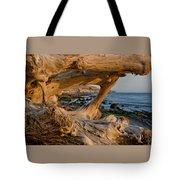 Bowling Ball Beach Framed In Driftwood Tote Bag