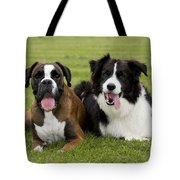 Boxer And Border Collie Tote Bag