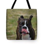 Boxer Licking His Chops Tote Bag