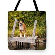 Boxer On Lake Dock Tote Bag by Stephanie McDowell