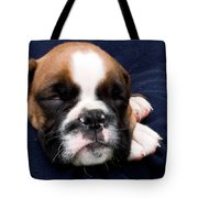 Boxer Puppy Sleeping Tote Bag by Weston Westmoreland