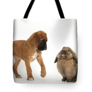 Boxer Puppy With Lionhead-lop Rabbit Tote Bag by Mark Taylor