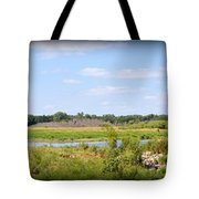 Boylan Marsh Tote Bag