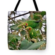 Brace Of Chiriqui Conures Tote Bag