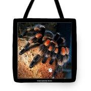 Brachypelma Smithi - Redknee Tarantula Tote Bag