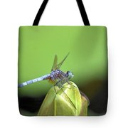 Bracing For The Wind Tote Bag