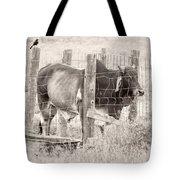 Brahman Bull Tote Bag