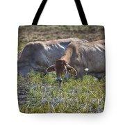 Brahman Cattle At The Waterhole Tote Bag