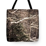 Branch In Forest In Winter Tote Bag