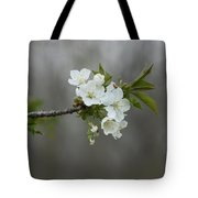 Branch Of Spring Tote Bag