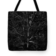 Branch Patterns Tote Bag