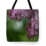 Branch With Spring Lilac Flowers Tote Bag