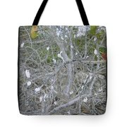 Branches 1 Tote Bag