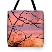 Branches Meet The Sky Tote Bag