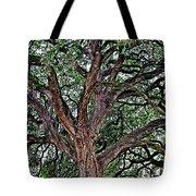 Branches Of Brio Tote Bag