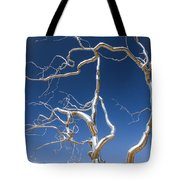 Branches Of Silver Tote Bag by Steven Bateson
