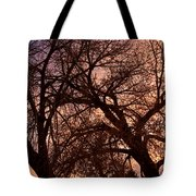 Branching Out At Sunset Tote Bag