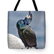 Brandts Cormorant Calling Tote Bag