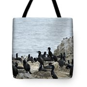 Brandt's Cormorant Colony At Point Lobos State Natural Reserve Tote Bag