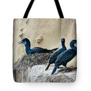 Brandts Cormorant Nesting On Cliff Tote Bag