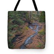 Bridal Vail Falls - Cvnp Tote Bag