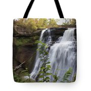Brandywine Falls Tote Bag