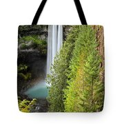 Brandywine Through The Trees Tote Bag