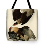 Brasilian Caracara Eagle Tote Bag