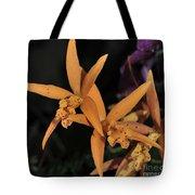 Brassolaeliocattleya Hawaiian Treat Tote Bag
