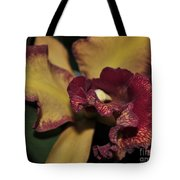 Brassolaeliocattleya Melinda Wheeler Halcyon Tote Bag