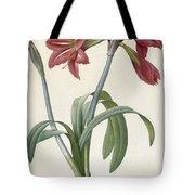 Brazilian Amaryllis Tote Bag